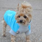 View Image 1 of Highline Fleece Dog Coat by Doggie Design - Teal and Gray