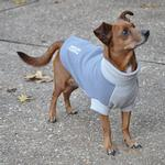 View Image 1 of Highline Fleece Dog Coat by Doggie Design - Two Tone Gray