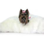View Image 2 of Arctic Dog Bed Mat by Hello Doggie - Ivory