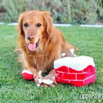 View Image 2 of Holiday Burrow Dog Toy - Chimney