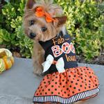 View Image 1 of Halloween Dog Harness Dress by Doggie Design - Fab-BOO-lous