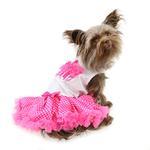View Image 1 of Hot Pink Cupcake Dog Dress by Pawpatu