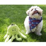 View Image 2 of HuggleHounds Octo-Knottie Dog Toy - Citron