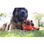 View Image 3 of HuggleHounds Woodland Knotties Dog Toy - Moose