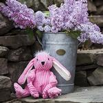 View Image 2 of HuggleHounds Woodland Knotties Toy - Bunny