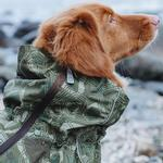 View Image 4 of Hurtta Downpour Overall Dog Suit - Camo