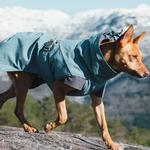 View Image 4 of Hurtta Expedition Dog Parka - Bilberry