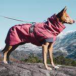 View Image 4 of Hurtta Expedition Dog Parka - Beetroot