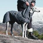 View Image 4 of Hurtta Expedition Dog Parka - Blackberry