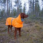 View Image 1 of Hurtta Extreme Warmer Dog Coat - Orange