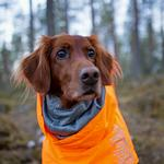 View Image 3 of Hurtta Extreme Warmer Dog Coat - Orange