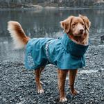 View Image 7 of Hurtta Monsoon Dog Coat - Bilberry