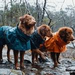 View Image 5 of Hurtta Monsoon Dog Coat - Bilberry