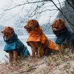 View Image 6 of Hurtta Monsoon Dog Coat - Bilberry