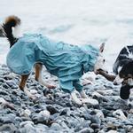 View Image 2 of Hurtta Rain Blocker Dog Coat - Stream