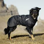 View Image 2 of Hurtta Summit Parka Dog Coat - Raven