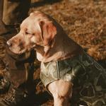 View Image 2 of Hurtta Swimmer Bug Blocker Dog Vest - Green Camo