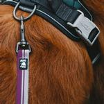 View Image 3 of Hurtta Weekend Warrior Dog Leash - Currant