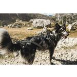 View Image 1 of Hurtta X-Sport Dog Harness - Raven