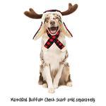View Image 2 of Huxley & Kent Holiday Dog Hat - Buffalo Check
