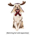 View Image 2 of Huxley & Kent Holiday Dog Scarf - Buffalo Check