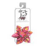 View Image 1 of Huxley & Kent Pinwheel Pet Collar Attachment - Donut Shoppe