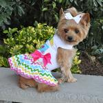 View Image 1 of Ice Cream Cart Dress with Matching Leash by Doggie Design