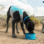View Image 2 of Jet Stream Dog Cooling Vest by RuffWear - Blue Lagoon