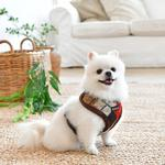 View Image 5 of Jolly Dog Harness by Puppia - Beige