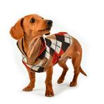 View Image 4 of Jolly Hooded Dog Shirt by Puppia - Beige