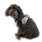 View Image 4 of Junior Dog Harness Vest by Puppia - Black