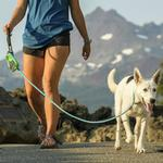 View Image 2 of Just-A-Cinch Dog Leash by RuffWear - Blue Atoll