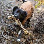 View Image 2 of K-9 Overcoat Utility Dog Jacket by RuffWear - Trailhead Brown