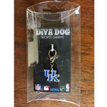 View Image 2 of Kentucky Wildcats Dog Collar Charm