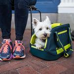 View Image 2 of Kurgo Explorer Pet Carrier