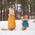 View Image 3 of Kurgo Loft Reversible Dog Jacket - Blue and Orange