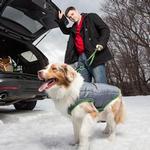 View Image 4 of Kurgo Loft Reversible Dog Jacket - Green and Gray