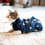 View Image 4 of Pixie Turtleneck Cat Dress by Catspia - Navy