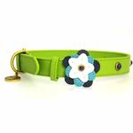 View Image 1 of Blue Petal Leather Dog Collar - Green