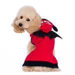 View Image 3 of Little Devil Dog Sweater by Dogo