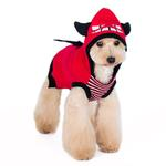 View Image 1 of Little Devil Dog Sweater by Dogo