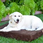 View Image 1 of Luca Orthopedic Dog Bed - Chocolate