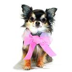 View Image 3 of Luxurious Fur Dog Cape by Hip Doggie - Pink