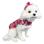 View Image 2 of Lydia Retro Dog Raincoat by Pooch Outfitters