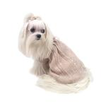 View Image 3 of Make Me Blush Dog Sweater By Oscar Newman