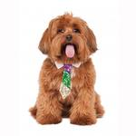 View Image 1 of Mardi Gras Dog Neck Tie