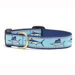 View Image 1 of Marlin Dog Collar by Up Country