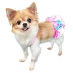 View Image 2 of Matira Dog Bikini by Pooch Outfitters