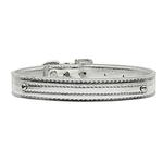View Image 1 of Metallic Two Tiered Dog Collar with 10MM Letter Strap - Silver