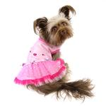 View Image 1 of Mia Party Dog Dress